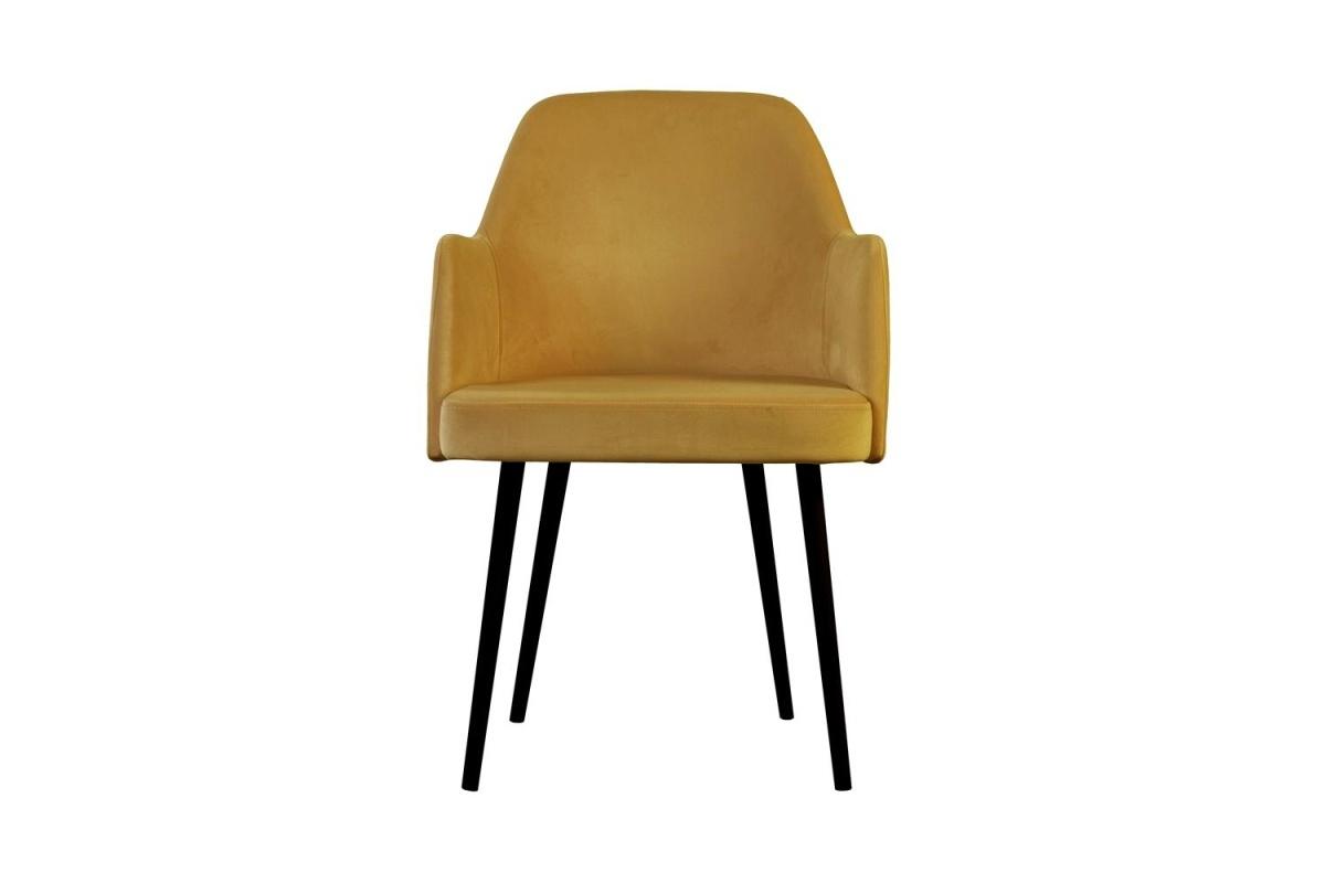 Stílusos fotel Ryland - különféle színek